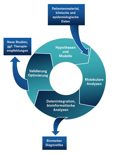 A model for the future. It is the aim of the CIIM to integrate insights and analytical methods from clinical scenarios and basic research in order to develop new diagnostics and individualised…