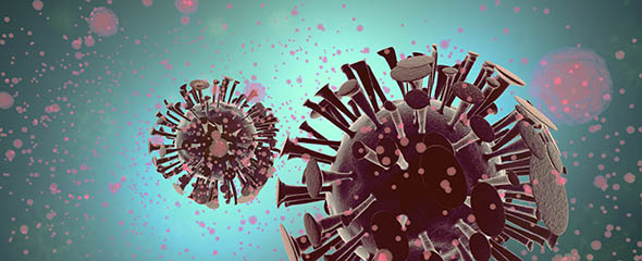 3D illustration of immune reaction to a virus attack. ©Adobe Stock/Mike Mareen